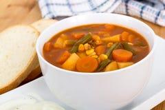 Φυτικό stew κύπελλο στοκ φωτογραφίες με δικαίωμα ελεύθερης χρήσης