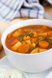 Φυτικό stew κύπελλο στοκ εικόνες