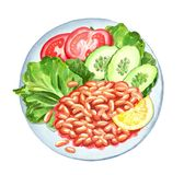 Φυτικό watercolor πιάτων Στοκ Φωτογραφία