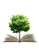 φυτό βιβλίων Στοκ εικόνες με δικαίωμα ελεύθερης χρήσης