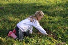 φυτό κοριτσιών Στοκ Εικόνες