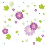 φυτό λουλουδιών Στοκ Εικόνες