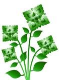 φυτό λουλουδιών ελεύθερη απεικόνιση δικαιώματος