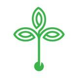 Φυτό με το σπόρο και το πράσινο σχέδιο εικονιδίων λογότυπων φύλλων Στοκ εικόνα με δικαίωμα ελεύθερης χρήσης