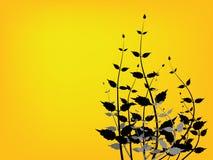 φυτό πεδίων διανυσματική απεικόνιση