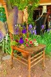 φυτό σε δοχείο Στοκ Φωτογραφίες