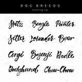 Φυλές σκυλιών εγγραφής Στοκ Εικόνες
