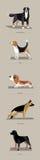 Φυλές σκυλιών στο μινιμαλιστικό ύφος Στοκ Φωτογραφίες