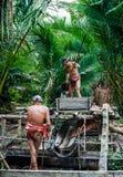 Φυλή Mentawai ατόμων στη ζούγκλα που συλλέγει τις εγκαταστάσεις Στοκ Εικόνες