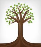 Φυλλώδης πράσινος η εννοιολογική τέχνη δέντρων που απομονώνεται Στοκ Εικόνες