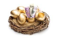 Φωλιά με τα χρυσά αυγά σε ένα άσπρο υπόβαθρο Χρυσά αυγά στη φωλιά με των δολαρίων Στοκ Εικόνες