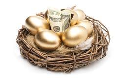 Φωλιά με τα χρυσά αυγά σε ένα άσπρο υπόβαθρο Χρυσά αυγά στη φωλιά με των δολαρίων Στοκ Εικόνα