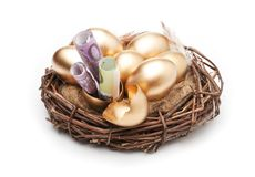 Φωλιά με τα χρυσά αυγά σε ένα άσπρο υπόβαθρο Χρυσά αυγά στη φωλιά με των δολαρίων Στοκ φωτογραφία με δικαίωμα ελεύθερης χρήσης