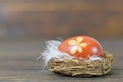 Φωλιά Πάσχας με το αυγό Πάσχας που χρωματίζεται με το δέρμα κρεμμυδιών Στοκ φωτογραφία με δικαίωμα ελεύθερης χρήσης