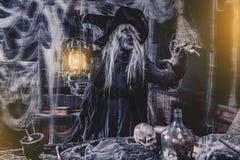 Φωλιά της κακής μάγισσας στοκ φωτογραφία με δικαίωμα ελεύθερης χρήσης