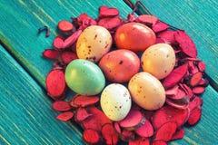 Φωλιά των αυγών ορτυκιών σοκολάτας στοκ εικόνα