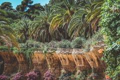 Φωλιές πουλιών στο πάρκο Guell στοκ εικόνα με δικαίωμα ελεύθερης χρήσης