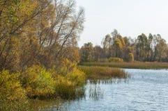 Φωλλ Ρίβερ Το ζωηρόχρωμο φύλλωμα φθινοπώρου πέρα από τη λίμνη με όμορφο επιζητά Στοκ Εικόνα