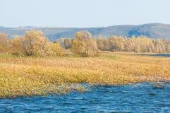 Φωλλ Ρίβερ Το ζωηρόχρωμο φύλλωμα φθινοπώρου πέρα από τη λίμνη με όμορφο επιζητά Στοκ φωτογραφίες με δικαίωμα ελεύθερης χρήσης