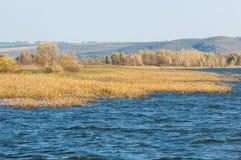 Φωλλ Ρίβερ Το ζωηρόχρωμο φύλλωμα φθινοπώρου πέρα από τη λίμνη με όμορφο επιζητά Στοκ φωτογραφία με δικαίωμα ελεύθερης χρήσης