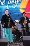 Φωνητικός-οργανική ζώνη τζαζ συνόλων καλλιτεχνών, τραγουδιστών και μουσικών απόδοσης shoobedoobe Στοκ φωτογραφία με δικαίωμα ελεύθερης χρήσης