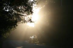 φως ακτίνων Στοκ εικόνες με δικαίωμα ελεύθερης χρήσης