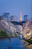 Φως ανθών κερασιών Sakura επάνω και ορόσημο πύργων του Τόκιο Στοκ Φωτογραφία