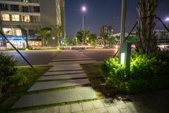 Φως διακοσμήσεων πυράκτωσης κήπων στο πάρκο τη νύχτα Αστική οδός στο υπόβαθρο Στοκ εικόνα με δικαίωμα ελεύθερης χρήσης