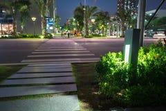 Φως διακοσμήσεων πυράκτωσης κήπων στο πάρκο τη νύχτα Αστική οδός στο υπόβαθρο Στοκ Εικόνα