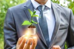 Φως εκμετάλλευσης επιχειρηματιών από το νεαρό βλαστό, πράσινη ενεργειακή έννοια Στοκ εικόνα με δικαίωμα ελεύθερης χρήσης