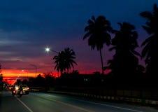 Φως ηλιοβασιλέματος πίσω από τα δέντρα καρύδων και το δρόμο στοκ εικόνες