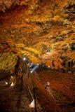 Φως διαδρόμων σφενδάμνου Kawaguchiko επάνω στο φεστιβάλ Στοκ εικόνα με δικαίωμα ελεύθερης χρήσης
