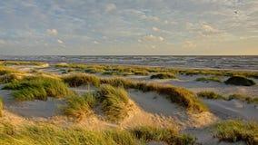 Φως και παιχνίδι σκιών στους αμμόλοφους κατά μήκος της θάλασσας της Βαλτικής Στοκ εικόνα με δικαίωμα ελεύθερης χρήσης