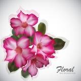 φως λουλουδιών ανασκόπησης playnig Στοκ εικόνα με δικαίωμα ελεύθερης χρήσης