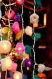 Φως λουλουδιών Στοκ Φωτογραφία