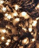 Φως σε μια χαραγμένη καράφα Στοκ Εικόνες