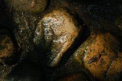 φως του ήλιου βράχων Στοκ Φωτογραφίες