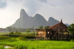Φως του ήλιου βραδιού, μπαμπού hut& x28 Cottage& x29  στους πράσινους τομείς ρυζιού _ στοκ εικόνα με δικαίωμα ελεύθερης χρήσης