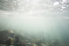 Φως του ήλιου που λάμπει μέσω της ωκεάνιας επιφάνειας και που φθάνει στον πυθμένα της θάλασσας, συμπεριλαμβανομένων των άσπρων βρ στοκ φωτογραφίες