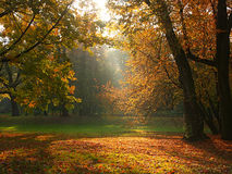 φως του ήλιου σπασιμάτω&nu στοκ φωτογραφίες