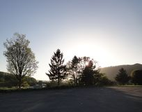 Φως του ήλιου μέσω των δέντρων Στοκ Φωτογραφίες