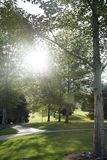 Φως του ήλιου που ρέει μέσω των δέντρων με τα σύννεφα θύελλας Στοκ Εικόνες