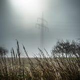 Φως του ήλιου στους τομείς Στοκ φωτογραφίες με δικαίωμα ελεύθερης χρήσης