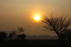 Φως του ήλιου Στοκ Φωτογραφίες