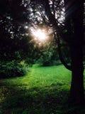 Φως του ήλιου Στοκ Φωτογραφία