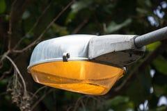 Φως του λαμπτήρα οδών στην ημέρα Στοκ εικόνες με δικαίωμα ελεύθερης χρήσης