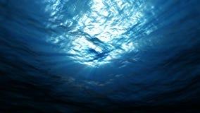 Φως υποβρύχιο στον ωκεανό απόθεμα βίντεο