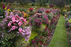 Φωτεινά & ζωηρόχρωμα αγγλικά σύνορα κήπων Στοκ Εικόνες