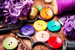 Φωτεινά κουμπιά και ιώδης κλάδος Στοκ Φωτογραφίες