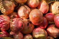 Φωτεινά κόκκινα φρούτα ροδιών στο κιβώτιο στον ήλιο Στοκ Φωτογραφίες